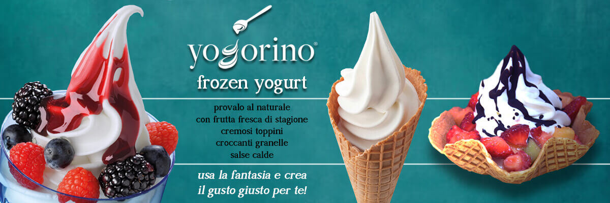 I professionisti del Frozen Yogurt